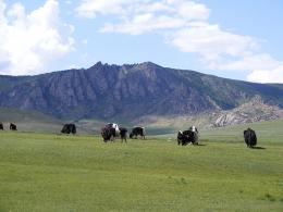 Terelj National Park, Mongolia
